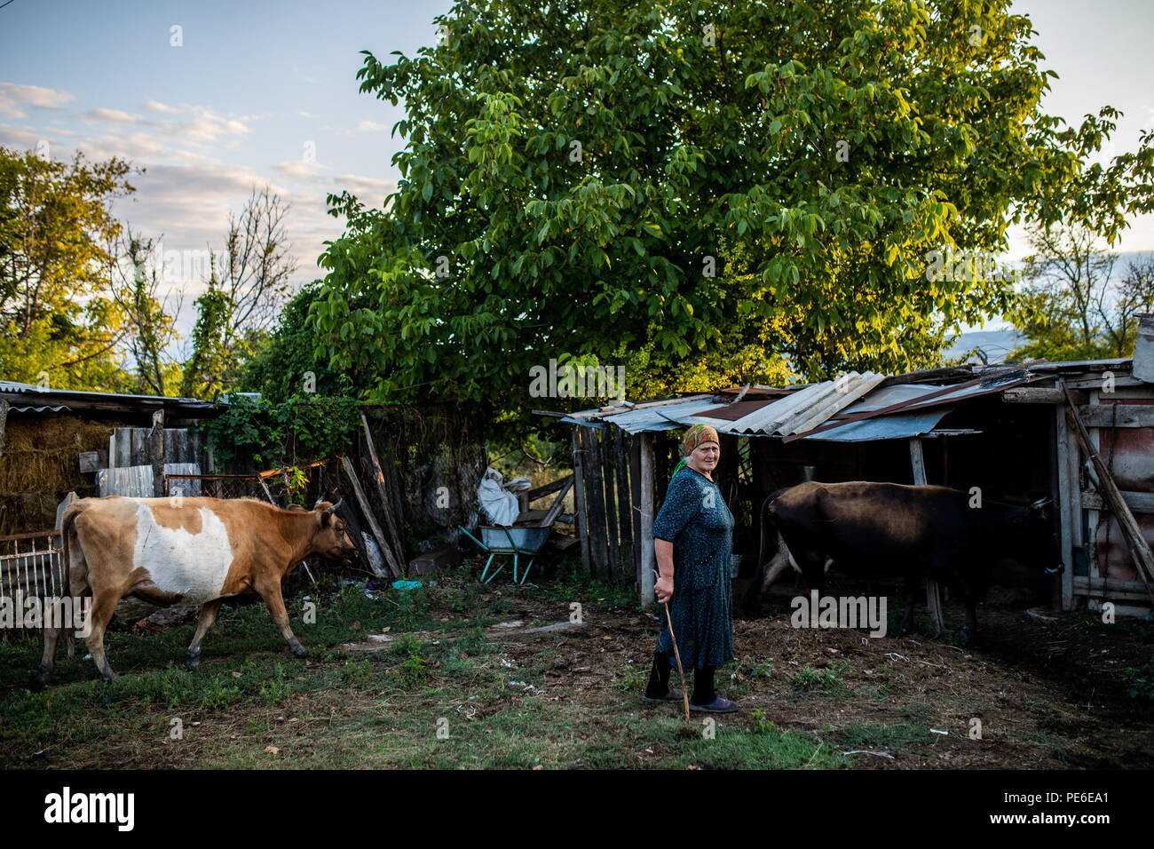 South Ossetia. 12th Aug, 2018. SOUTH OSSETIA - AUGUST 12, 2018: Margarita Madzigova, 63, outside her house in the village of Khetagurovo, Tskhinvali District, South Ossetia; Margarita and her husband Alikhan have been running a farm since their house was restored after the 2008 South Ossetian-Georgian military conflict. Sergei Bobylev/TASS Credit: ITAR-TASS News Agency/Alamy Live News - Stock Image