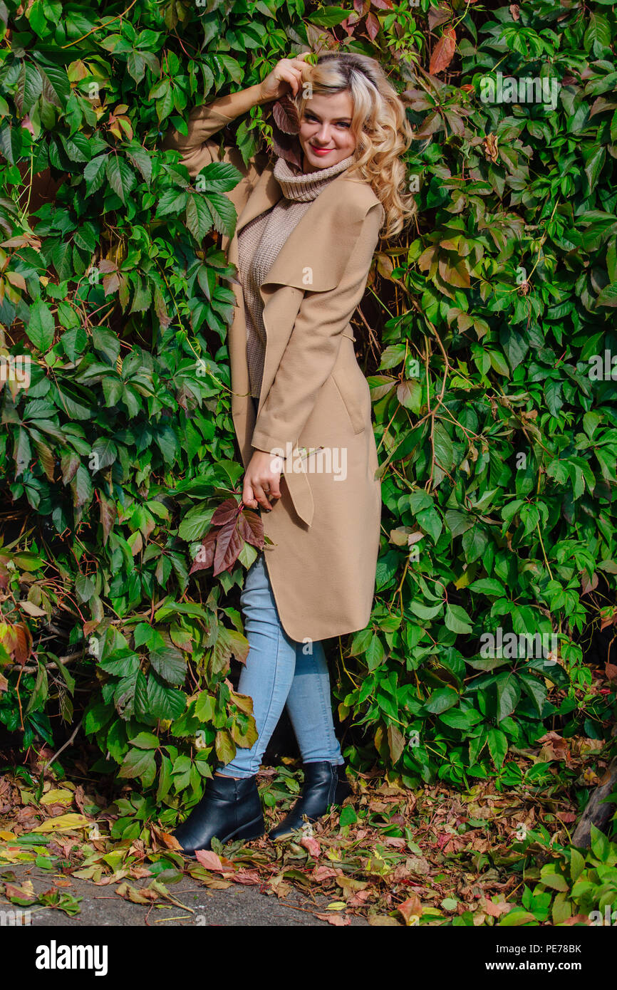 1c2f40b2101f Yuong beautiful woman in sweater and coat stands next to the background of wild  grapes holding bouquet of autumn leaves in park