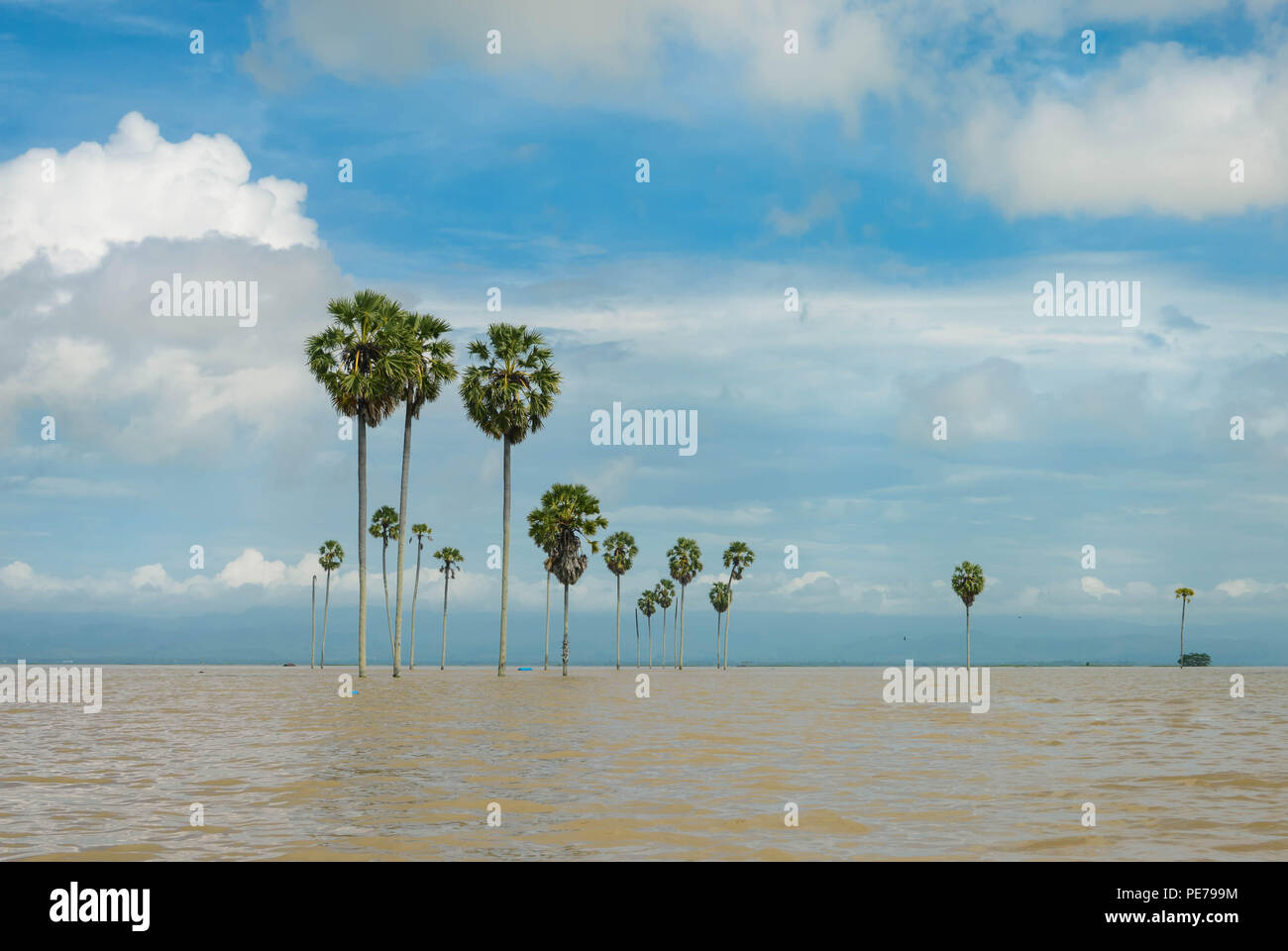 Panoramic landscapes of the flooded lake Tempe in the south of Sulawesi, Indonesia - Stock Image