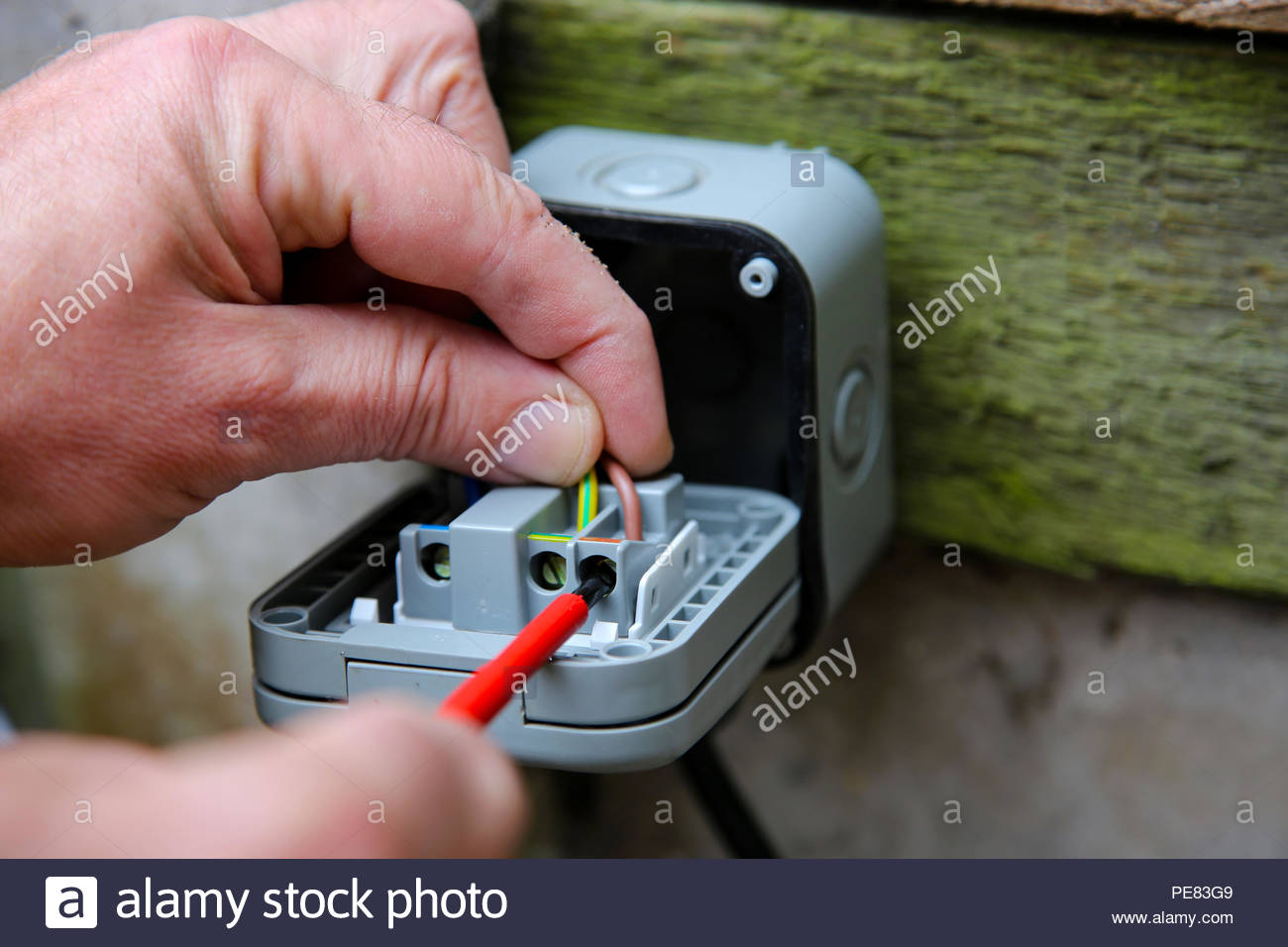 Peachy Man Wiring An Electric Socket Using An Electrical Screwdriver Wiring Cloud Mangdienstapotheekhoekschewaardnl