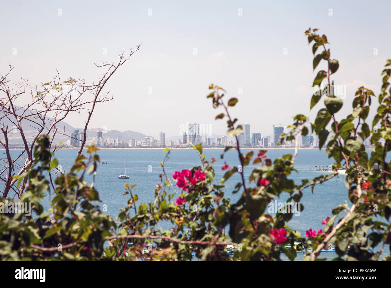 Asian City Nha Trang Skyline Over The Green Branches With Pink