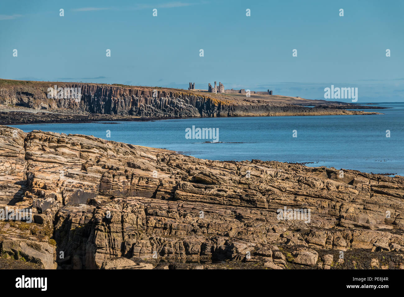 Northumberland Coast AONB landscape, Cullernose Point and Dunstanburgh Castle from Howick in summer under a clear blue sky - Stock Image