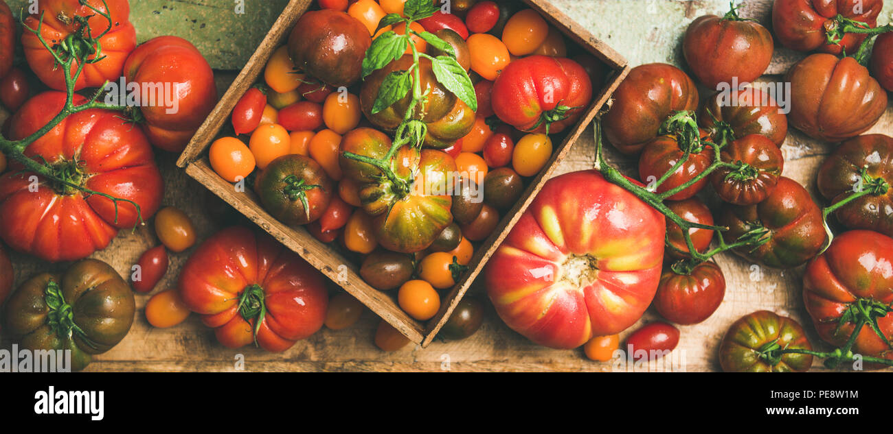 Flat -lay of fresh colorful tomatoes variety - Stock Image