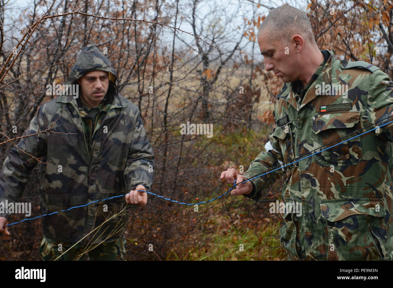 Bulgarian soldiers of 1-61st Mechanized Battalion prepare wiring for the simulated explosions of enemy attacks during Exercise Peace Sentinel at Novo Selo Training Center, Bulgaria, Nov. 24, 2015. (U.S. Army photo by Staff Sgt. Steven M. Colvin/Released) - Stock Image