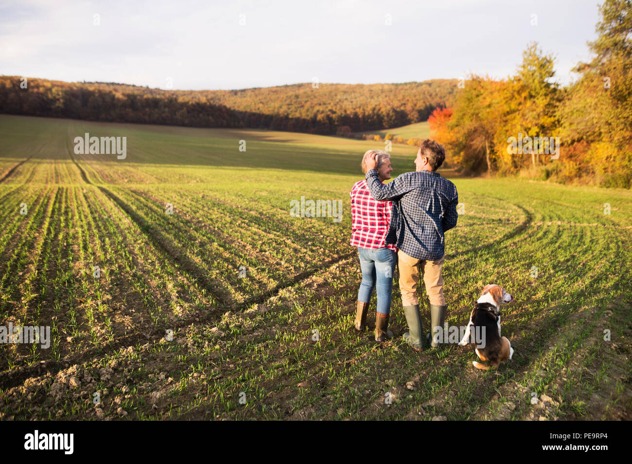 Senior couple with dog on a walk in an autumn nature. - Stock Image