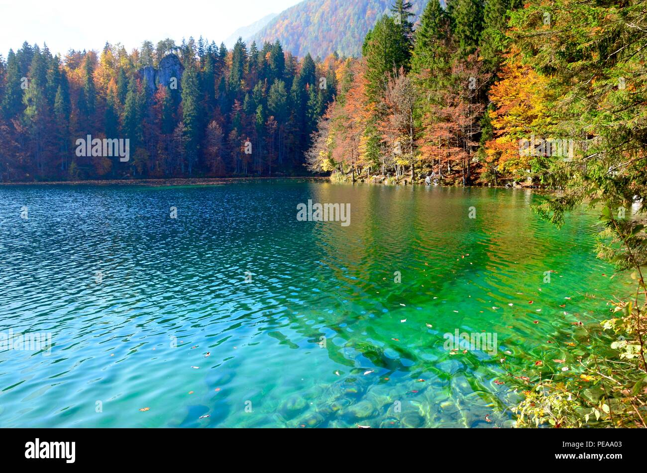 Autumn landscape at Lakes Laghi di Fusine in Italy, Slovenian Border, Europe, fall foliage, colorful trees, Travisio, explorers holiday, mountains - Stock Image