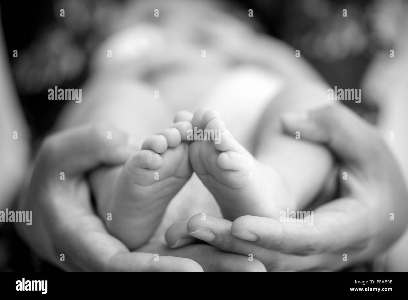 Feet of a newborn baby in the hands of parents. Happy Family oncept. Mum and Dad hug their baby's legs. - Stock Image