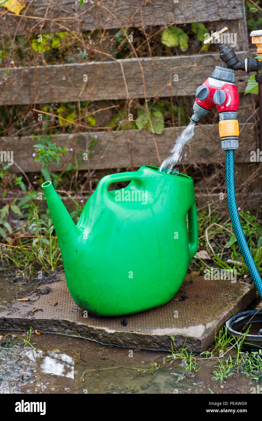 Water being taken from a tap with a hose pipe and watering can. - Stock Image