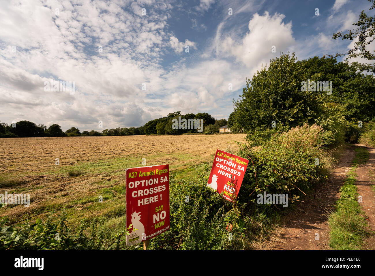 Binsted Woods, Arundel, West Sussex: Option 5A Arundel Bypass - a controversial dual carriageway that will cut across ancient pastures and woodland. - Stock Image