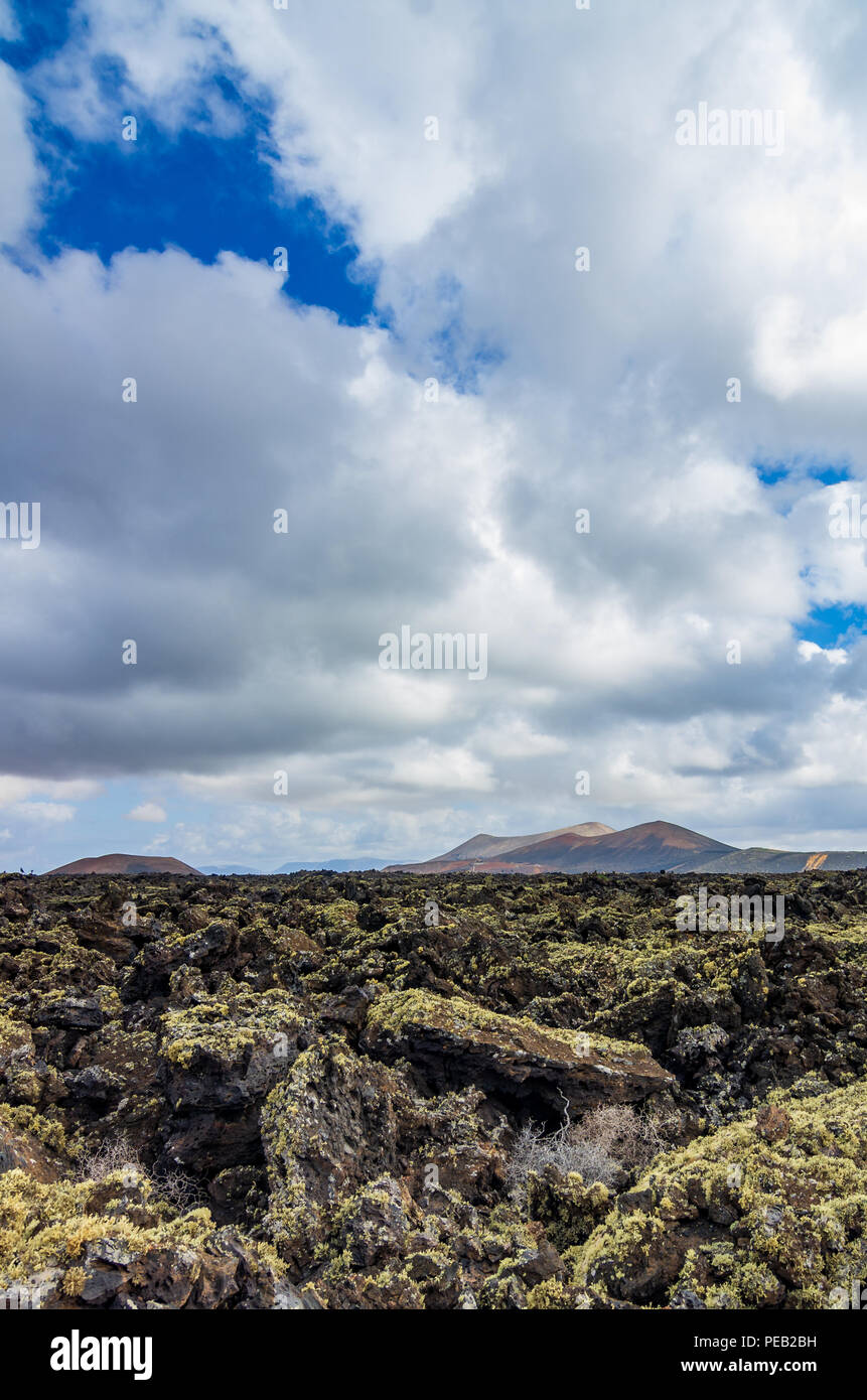 View over a lava field on Lanzarote with volcanoes in the background, canary islands, Spain - Stock Image