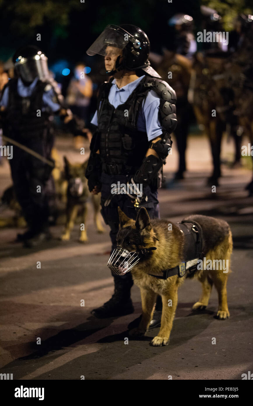 Romania, Bucharest - August 10, 2018: Police man with trained dog Stock Photo