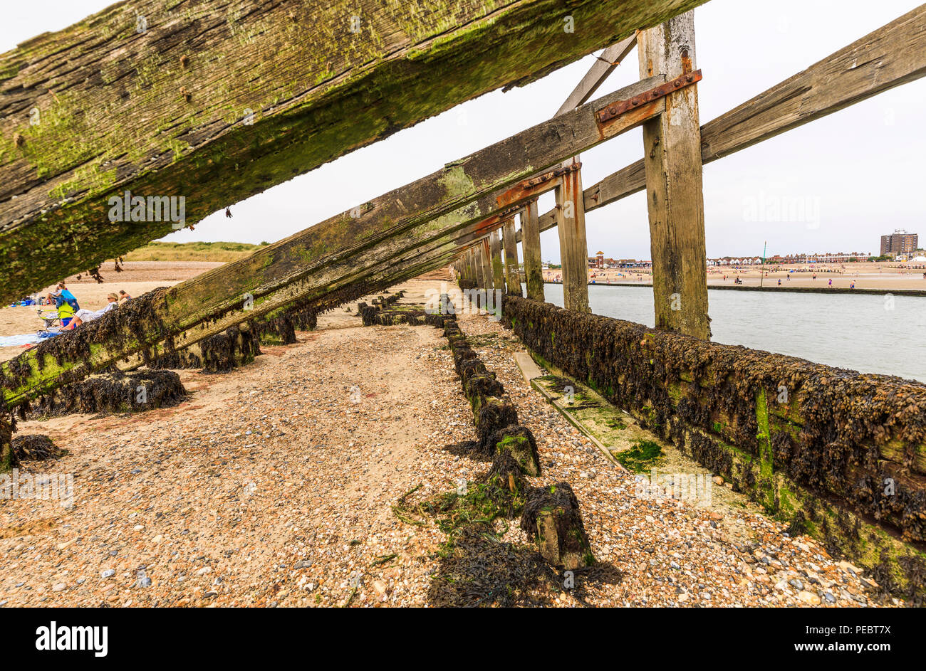 Substantial wooden groyne on West Beach next to the River Arun, Littlehampton, a small holiday resort on the south coast in West Sussex, UK in summer - Stock Image