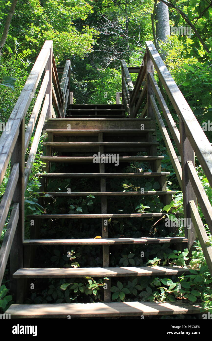 Stairs to the beach during the summer in Union Pier, Michigan. - Stock Image