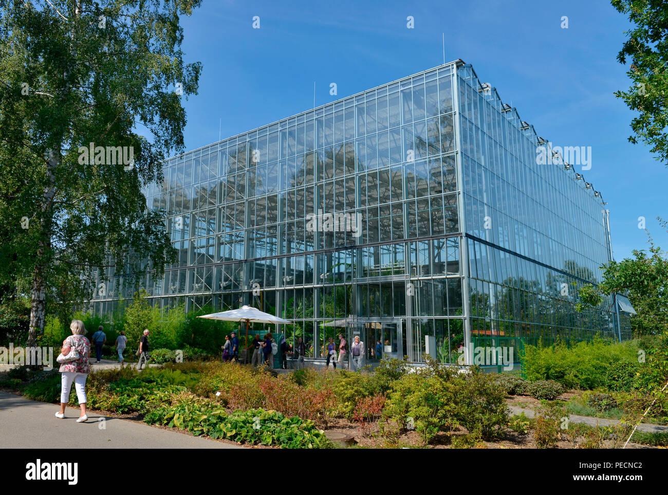 greenhouse greenhouses glasshouse glasshouses stock photos greenhouse greenhouses glasshouse. Black Bedroom Furniture Sets. Home Design Ideas