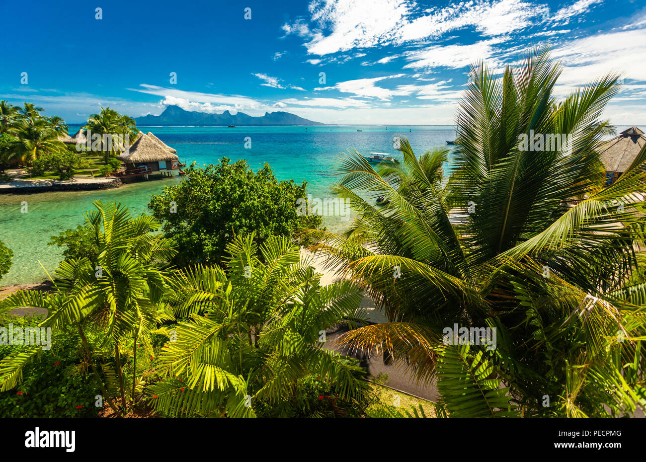 Overwater bungalows with best beach for snorkeling, Tahiti, French Polynesia, Moorea in the background - Stock Image