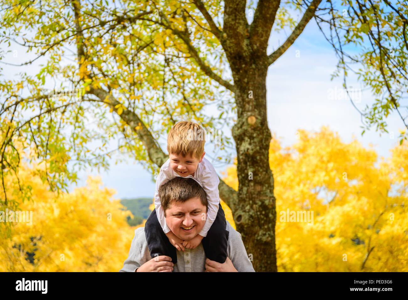 Father giving his son piggyback ride in autumn park, Adelaide Hills, South Australia - Stock Image