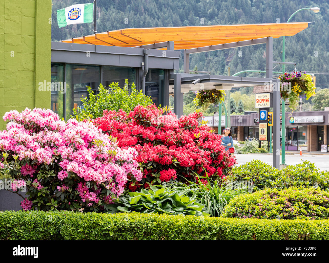 Floral display in the town of Hope, British Columbia, Canada - Stock Image
