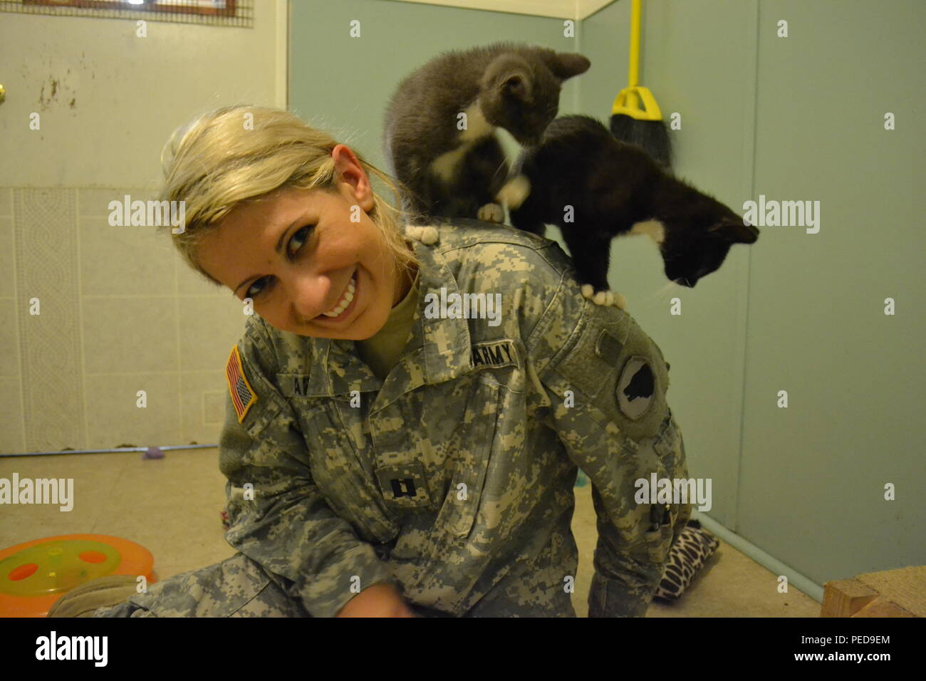 Capt. Cheryl Abbate, of 1st Brigade, 104th Division, socializes with the kittens at the Animal Refuge Center. - Stock Image