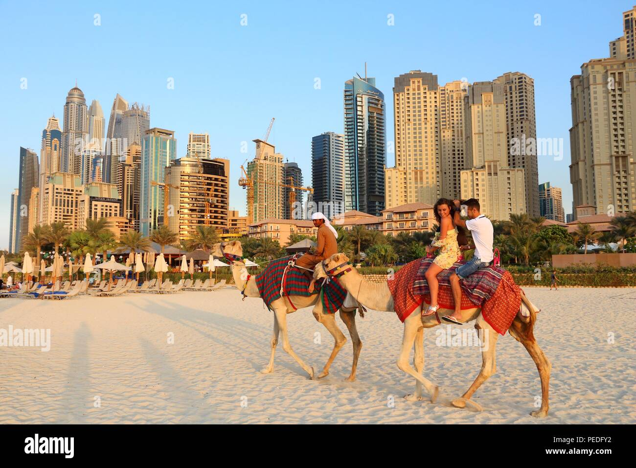 DUBAI, UAE - NOVEMBER 23, 2017: People ride camels in front of Jumeirah Beach Residence in Dubai, United Arab Emirates. Dubai has 14.9 million annual  - Stock Image