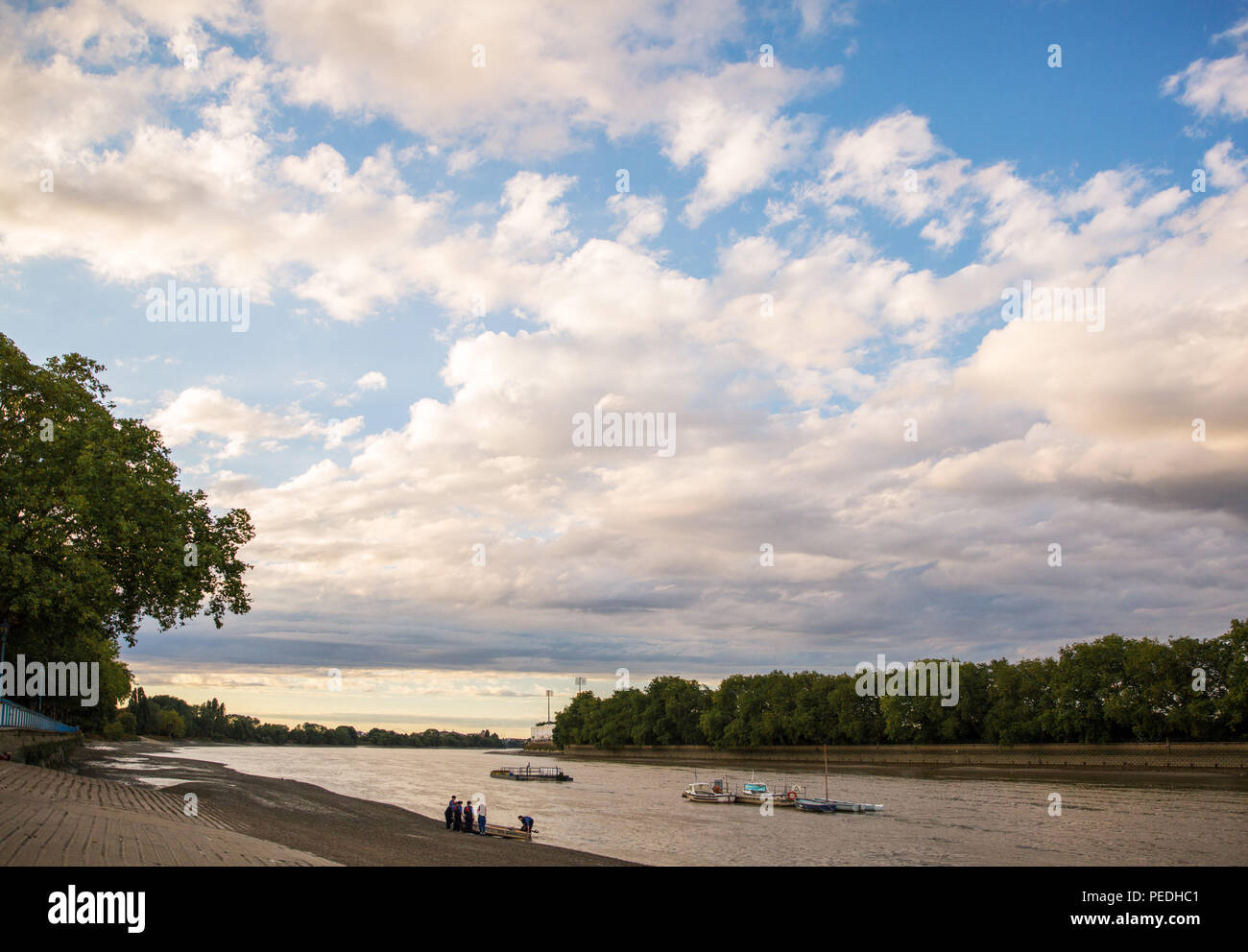 Rowers pulling a boat onto the beach at Putney Embankment. Low tide. River Thames. Looking West. Near Fulham. London. - Stock Image