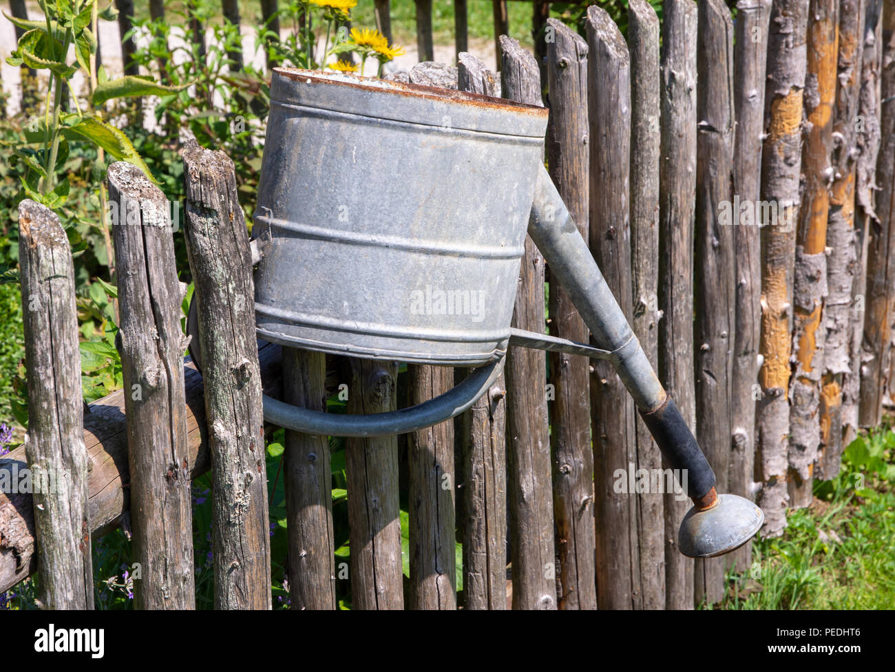 Vintage watering can on the wooden fence of a vegetable garden Stock Photo