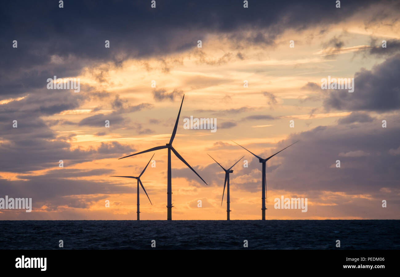 Dusk with wind turbines of Walney Extension Offshore wind farm - Stock Image
