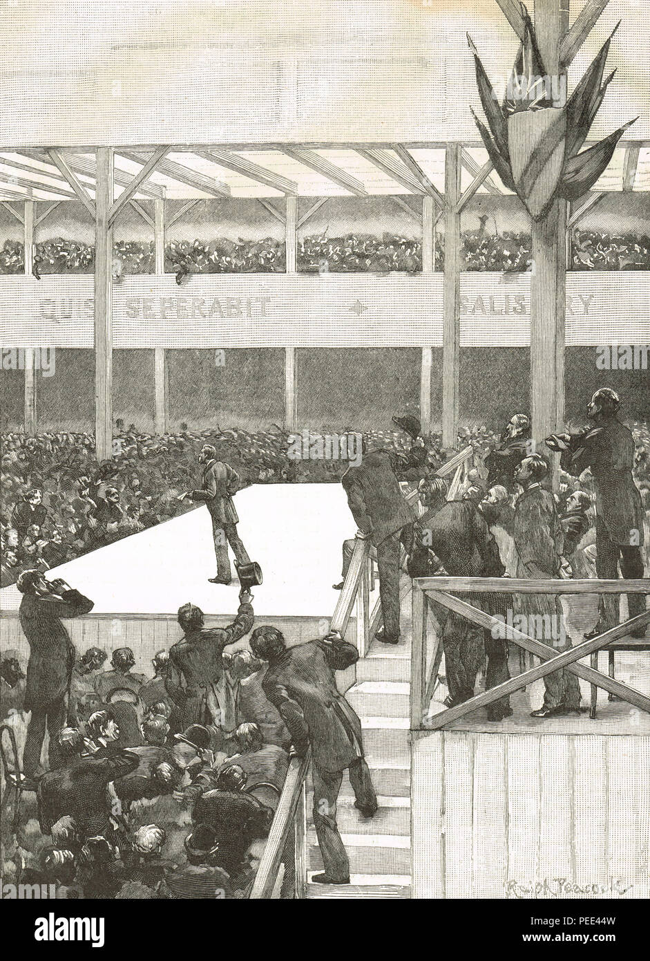 The Great Ulster convention, 17 June 1892.  A demonstration in Belfast against home rule - Stock Image