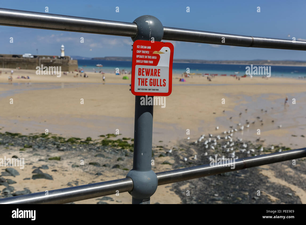 Beware the seagulls sign near the beach. Seagulls steel icecreams and other food of tourists. Don't feed them - Stock Image