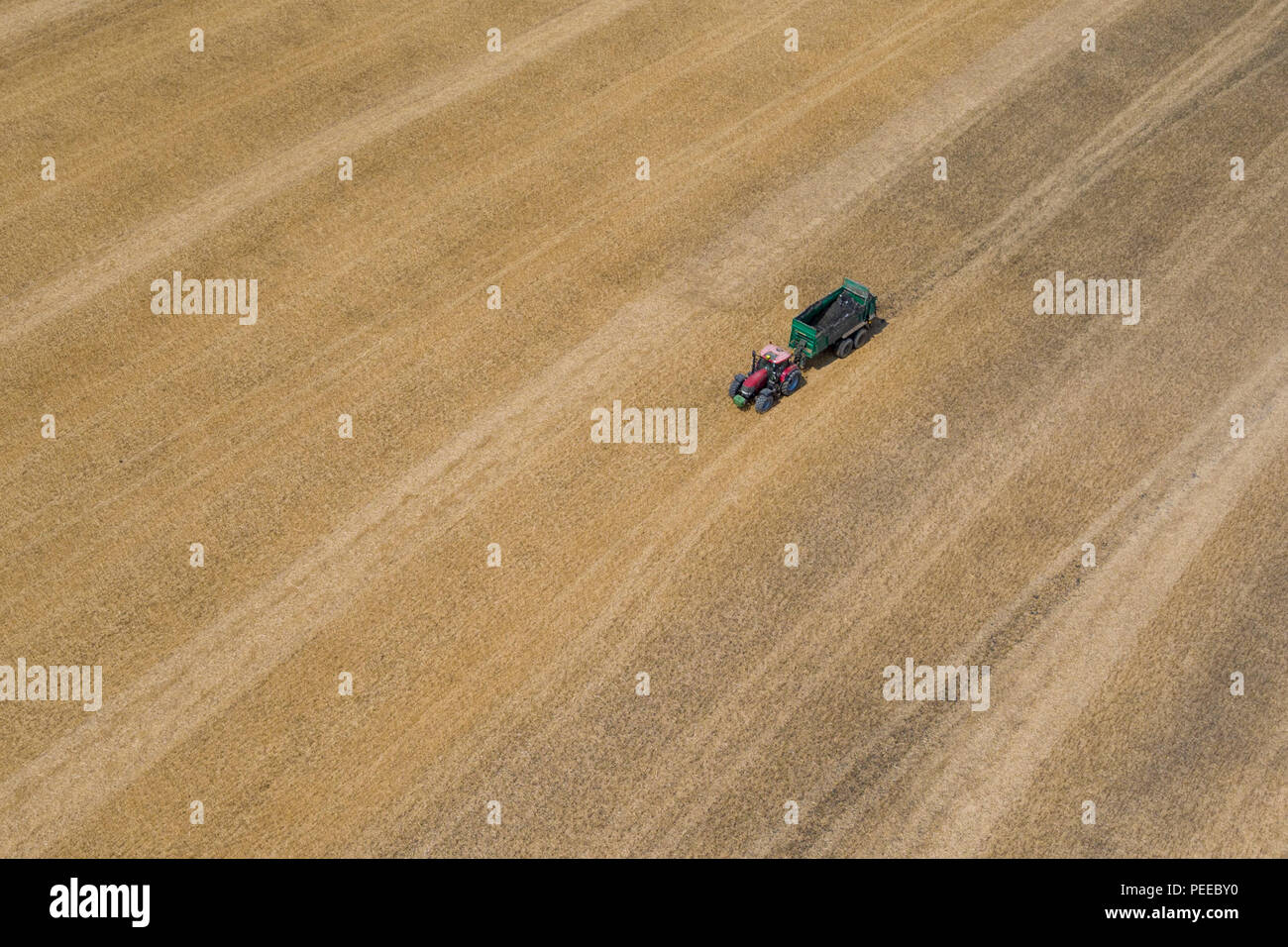 Aerial photos of tractors muck spreading during the summer harvest in Kent, UK - Stock Image