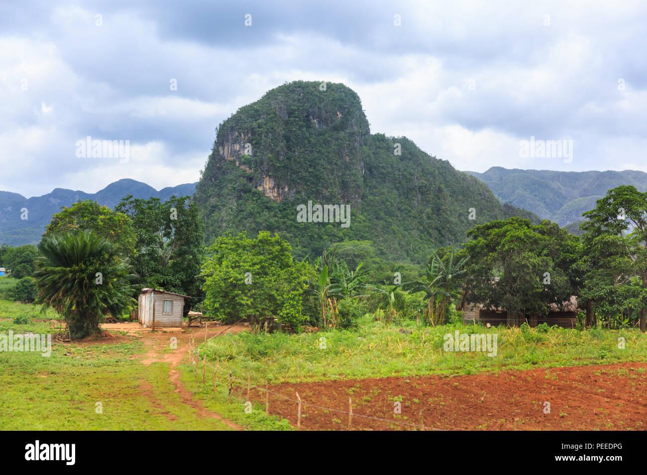 Viñales Valley panorama, view across lush green landscape of the popular rural tourist travel destination, Pinar del Rio Province, Cuba Stock Photo