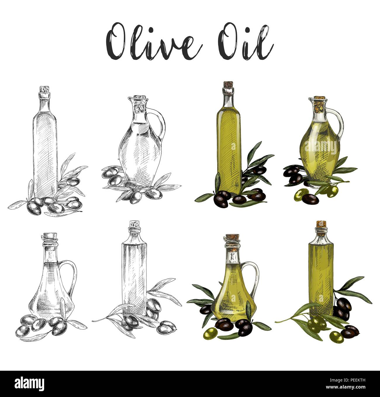 Set of isolated sketches of glass bottle with oil liquid near branches or twig with olive fruit berries. Healthy vegetarian or vegan greek or italian oil product. Organic, agriculture ingredient - Stock Vector