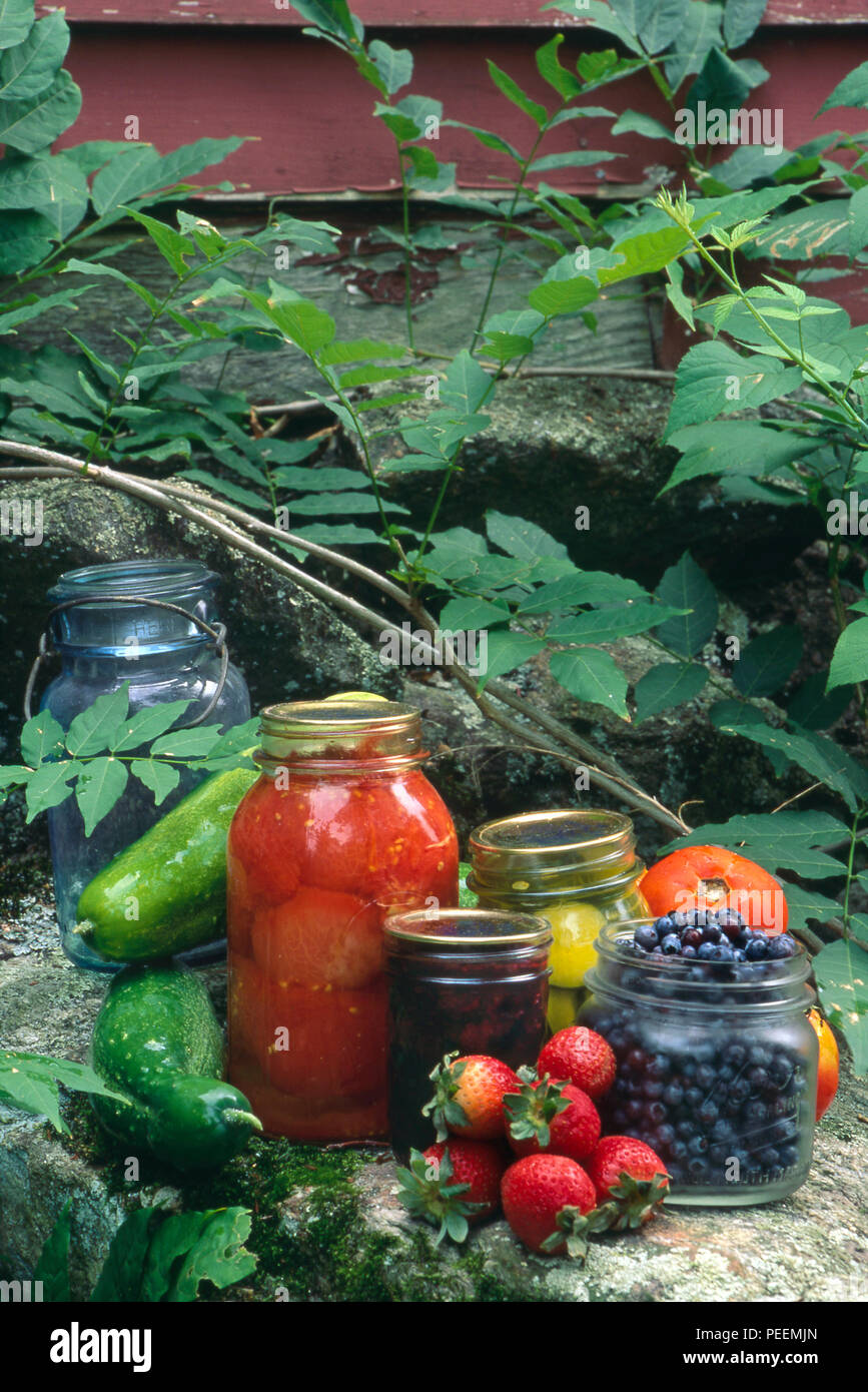Home-preserved foods. Photograph - Stock Image