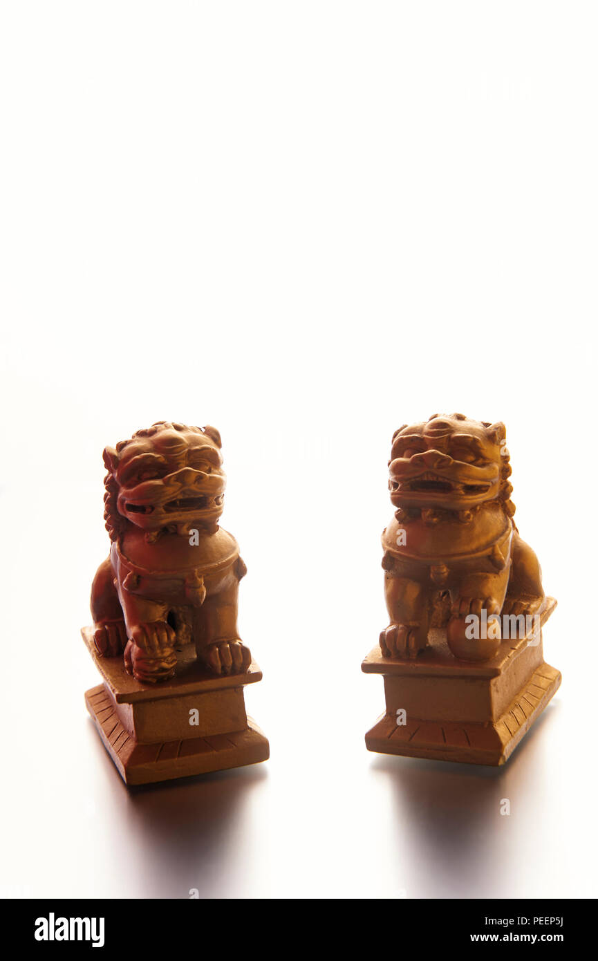 A pair of chinese guardian lions or foo dogs, male and female, on a white background - Stock Image
