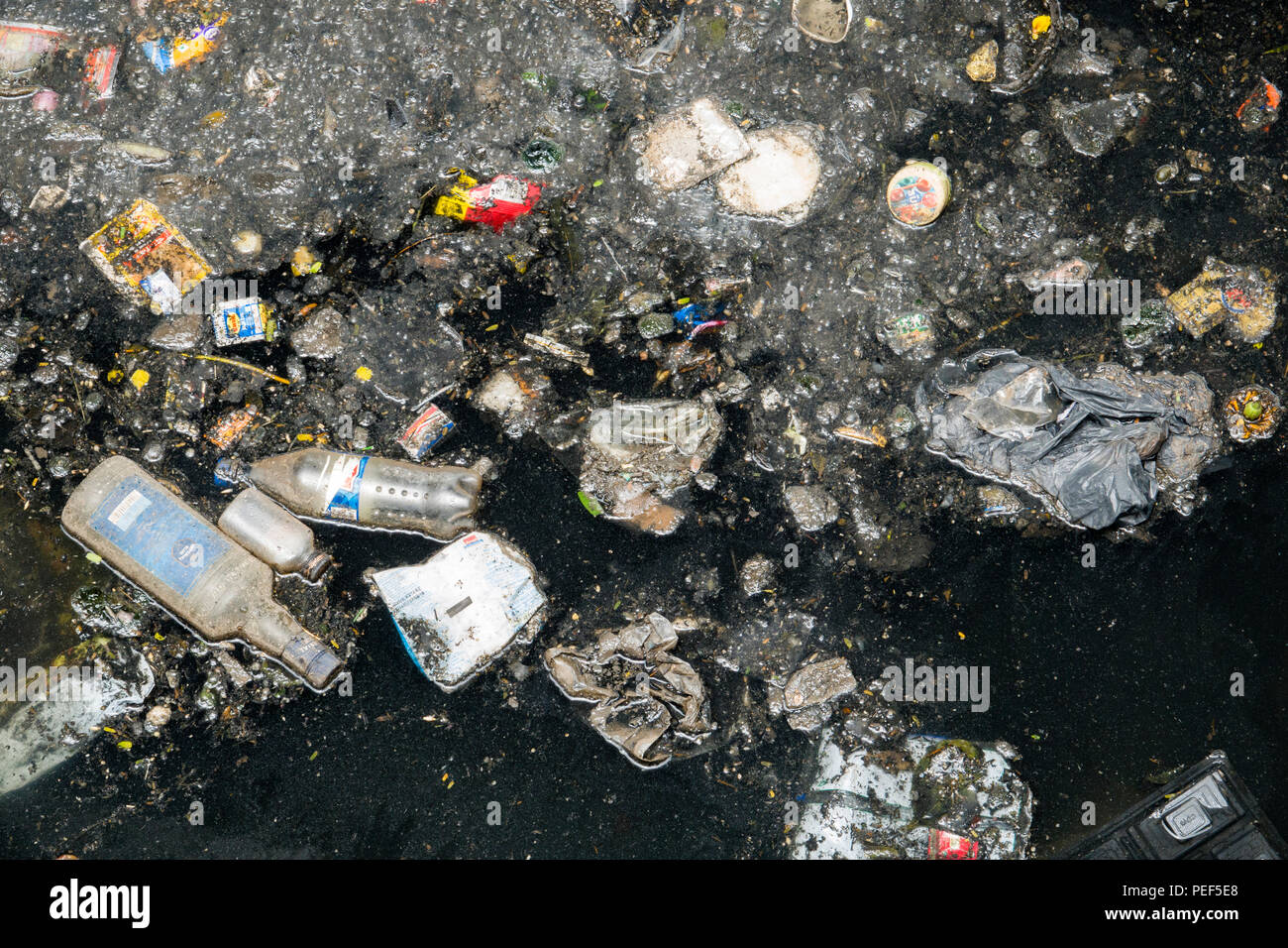 Toxic pollution floating in river, Mumbai, India - Stock Image