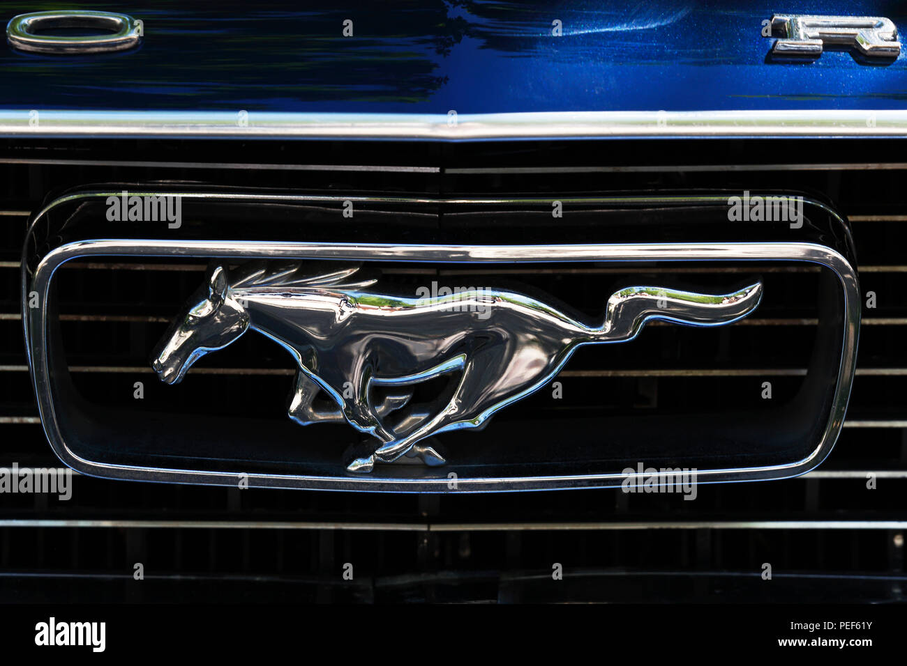 mustang emblem stock photos mustang emblem stock images. Black Bedroom Furniture Sets. Home Design Ideas