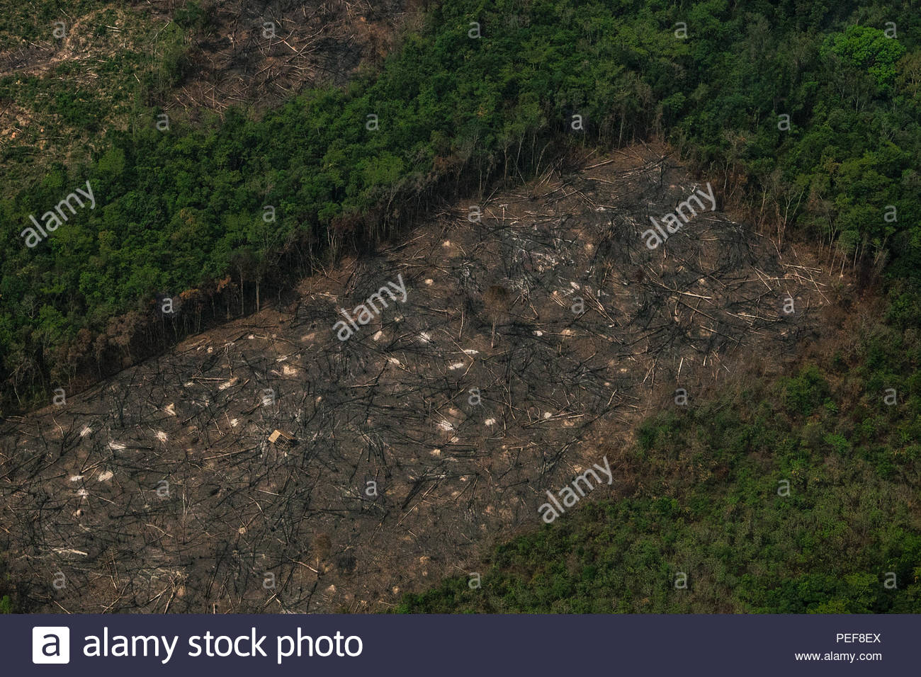 Aerial view of deforestation in the jungles of the Cardamom mountains in Cambodia. - Stock Image