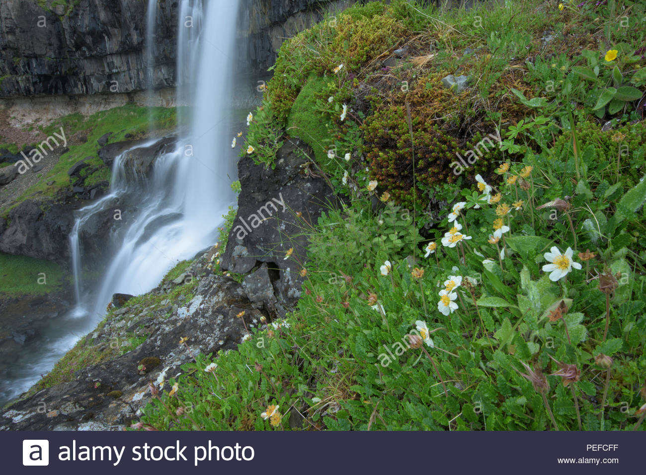 A waterfall near Vatnajokull. Stock Photo