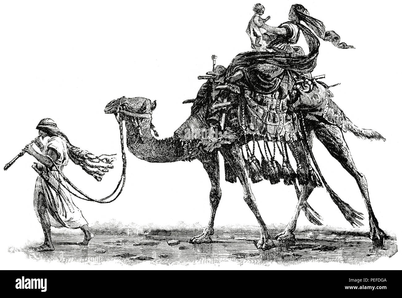 An Arab and his Family, Turkey, 1890's, Illustration, Classical Portfolio of Primitive Carriers, by Marshall M. Kirman, World Railway Publ. Co., Illustration, 1895 - Stock Image