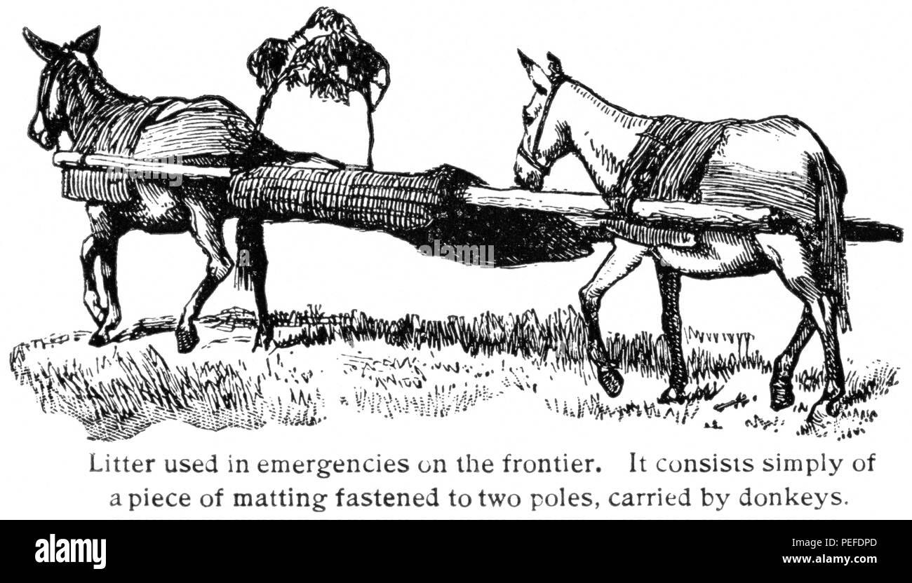 Donkey Ambulance, Western Frontier, USA, Illustration, Classical Portfolio of Primitive Carriers, by Marshall M. Kirman, World Railway Publ. Co., Illustration, 1895 - Stock Image