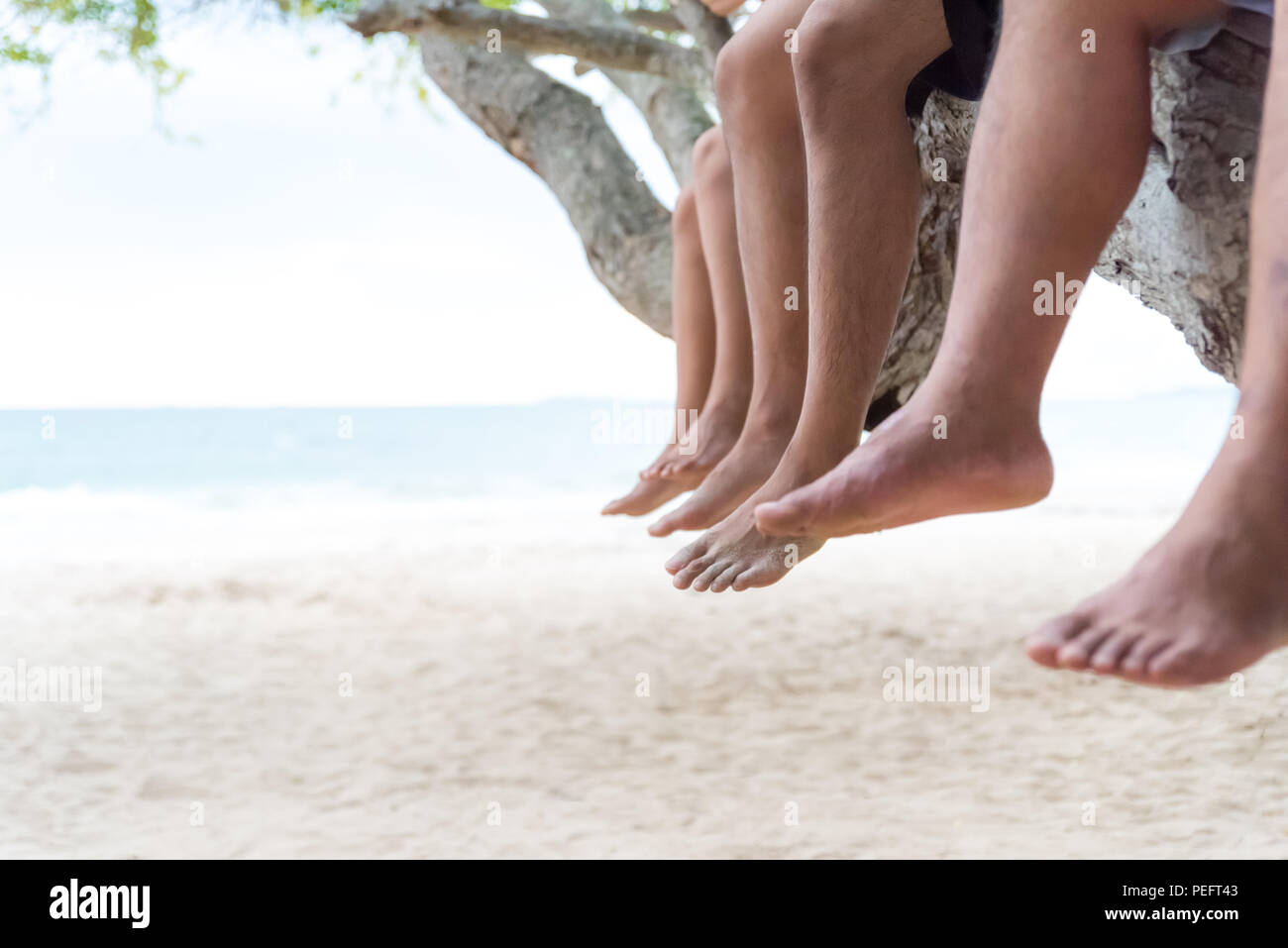 Three friends relaxing sit side by side on tree branch on the beach with blue sky background. friendship day and love concept. - Stock Image