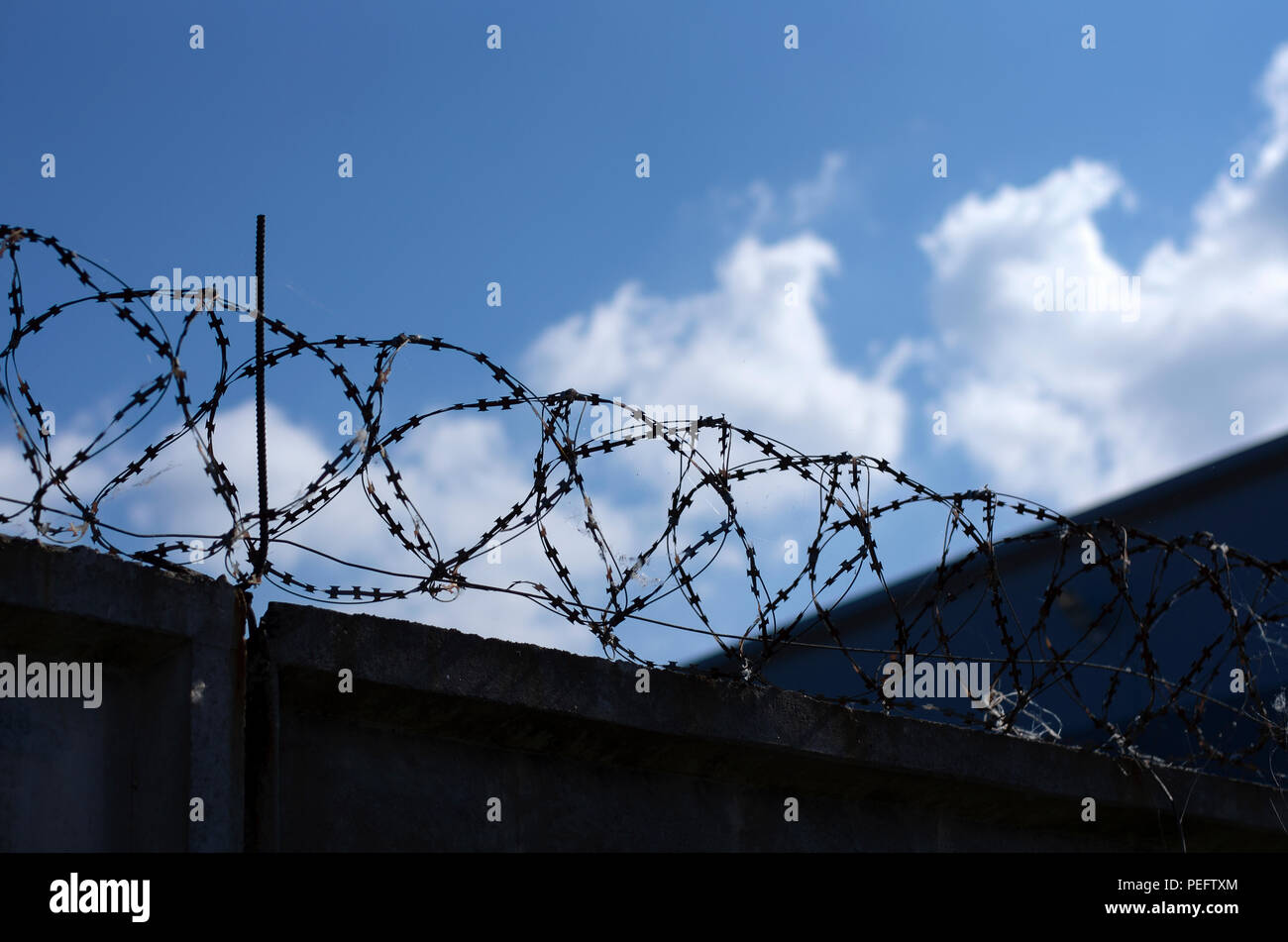 Metal barbed wire over concrete fence against blue sky with clouds - Stock Image