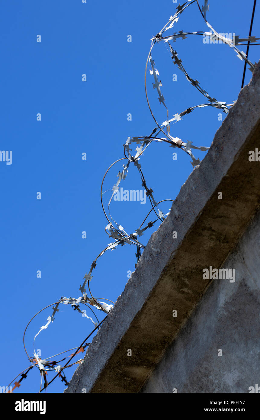Coils of barbed wire with spikes on a concrete fence in a vertical position in the background blue sky - Stock Image