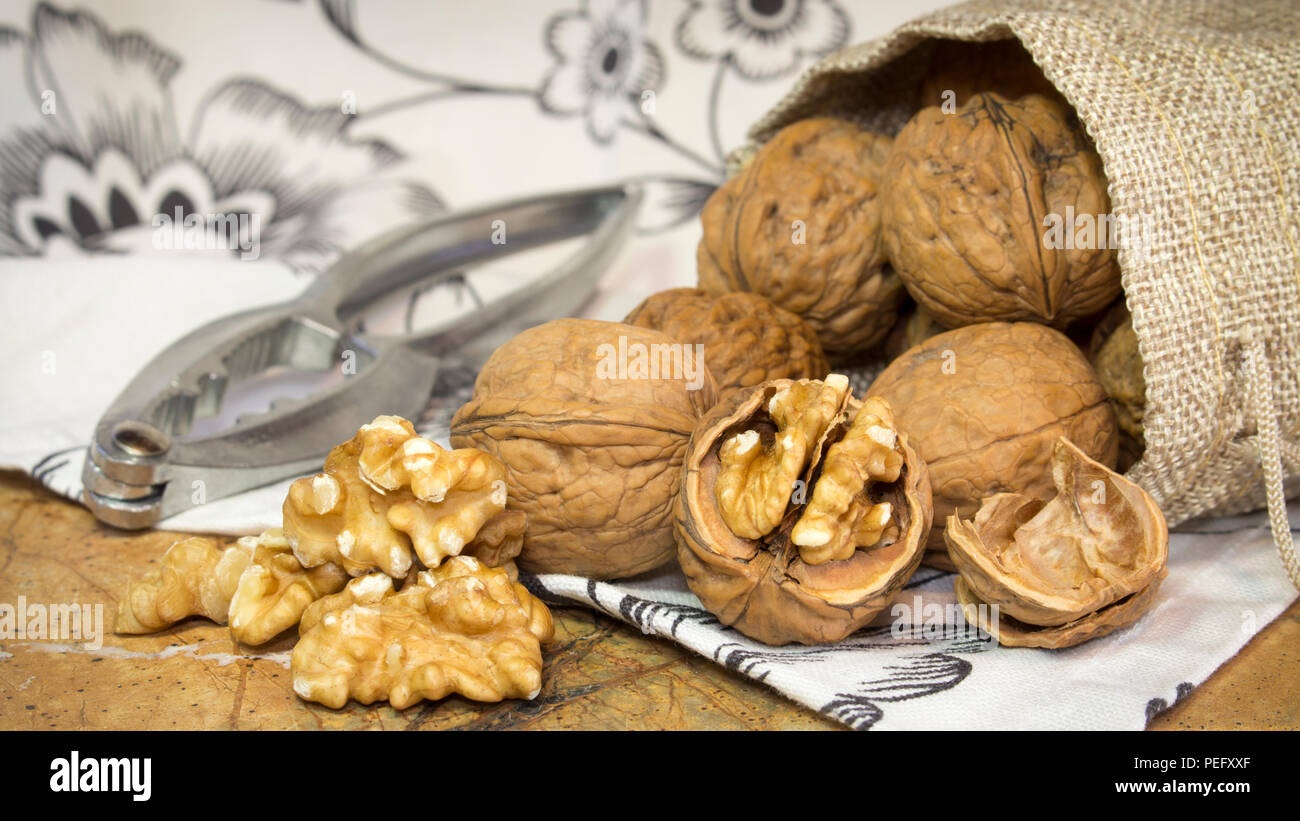 Horizontal photo of walnut shells and walnut kernels bursting out of burlap sack on top of marble surface with white towel with flowers. - Stock Image