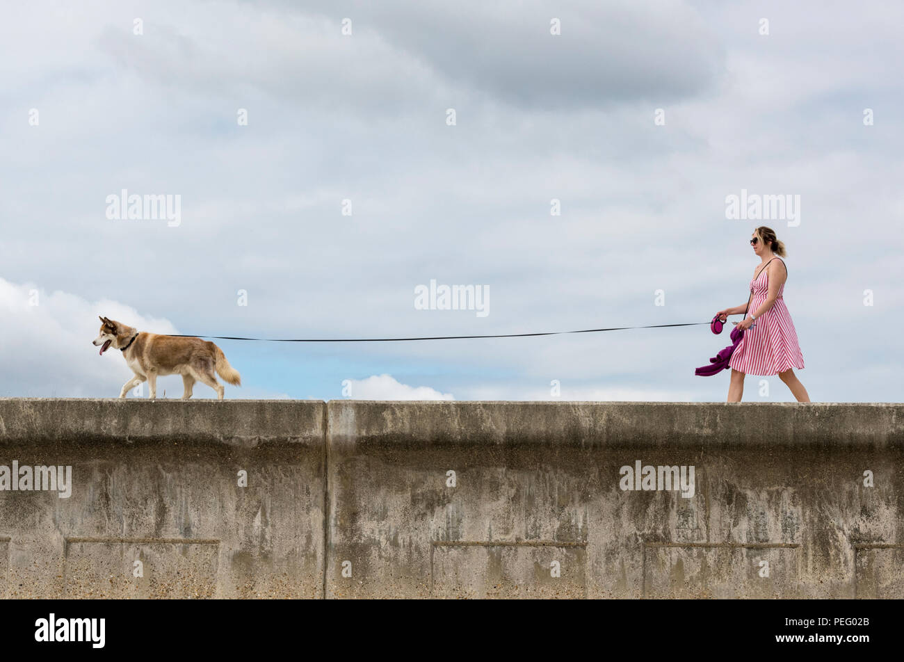 a young woman walking a dog along a sea wall in the summer on a long lead. - Stock Image