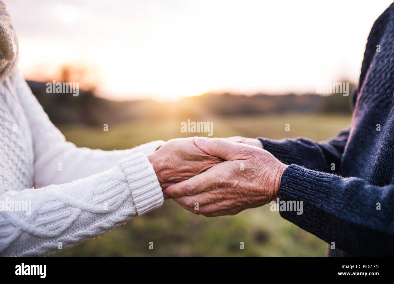 A close-up of holding hands of senior couple in an autumn nature at sunset. - Stock Image