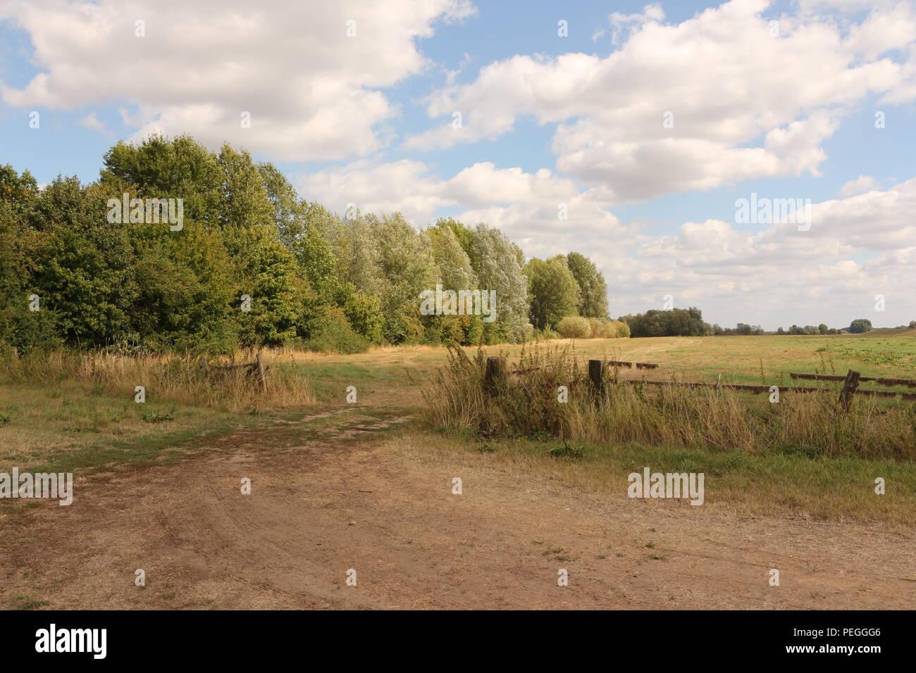 Naturlandschaft bei Xanten am Niederrhein - Stock Image