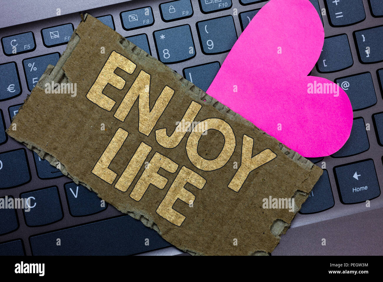 Conceptual hand writing showing Enjoy Life. Business photo text Any thing, place,food or person, that makes you relax and happy Paperboard Romantic lo - Stock Image