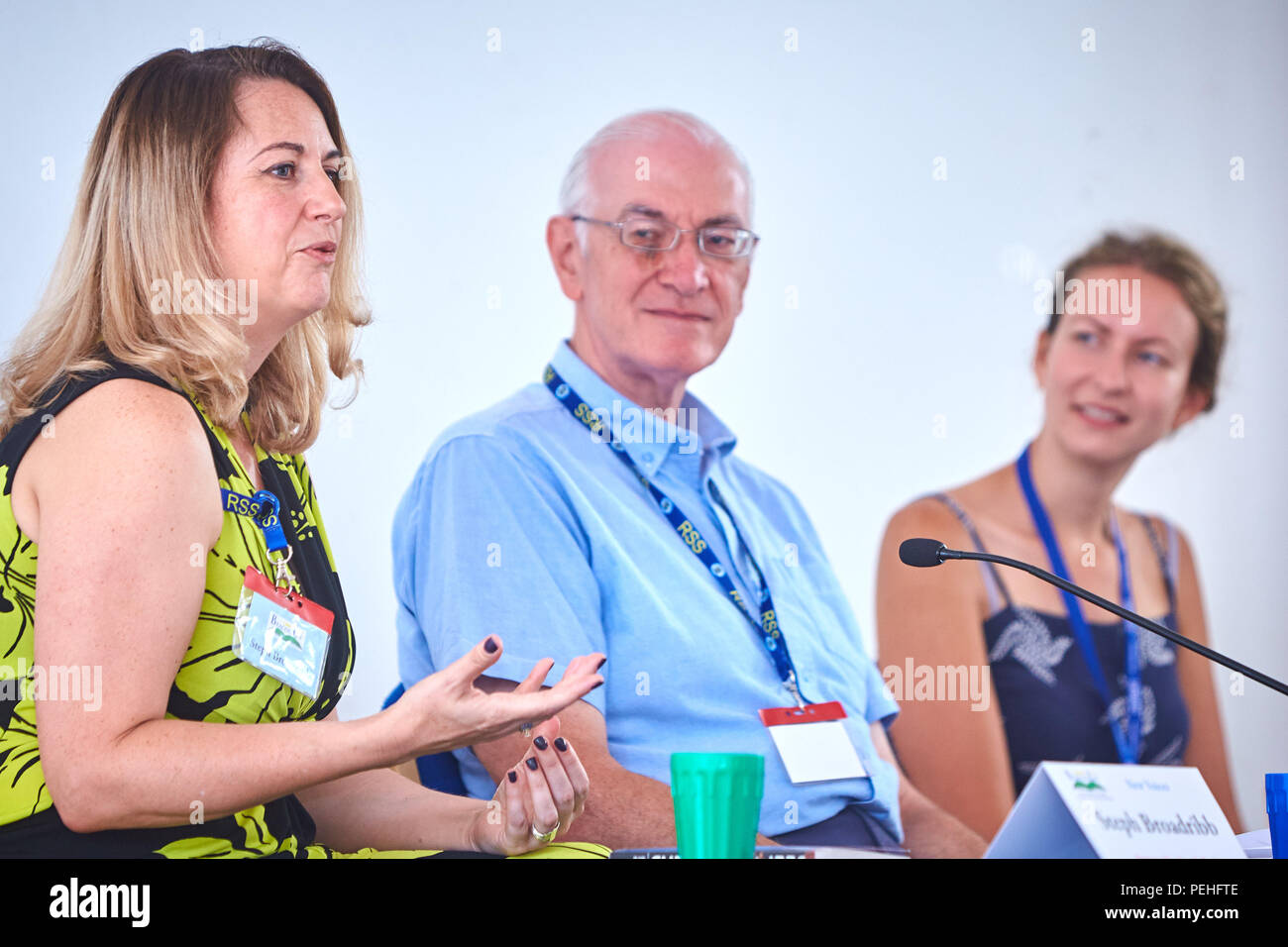 Stephanie Marland (L) writing as Steph Broadribb and Harriet Cummings (R) on the New Voices panel at BeaconLit book festival in Ivinghoe with Dave Sivers (C) - Stock Image
