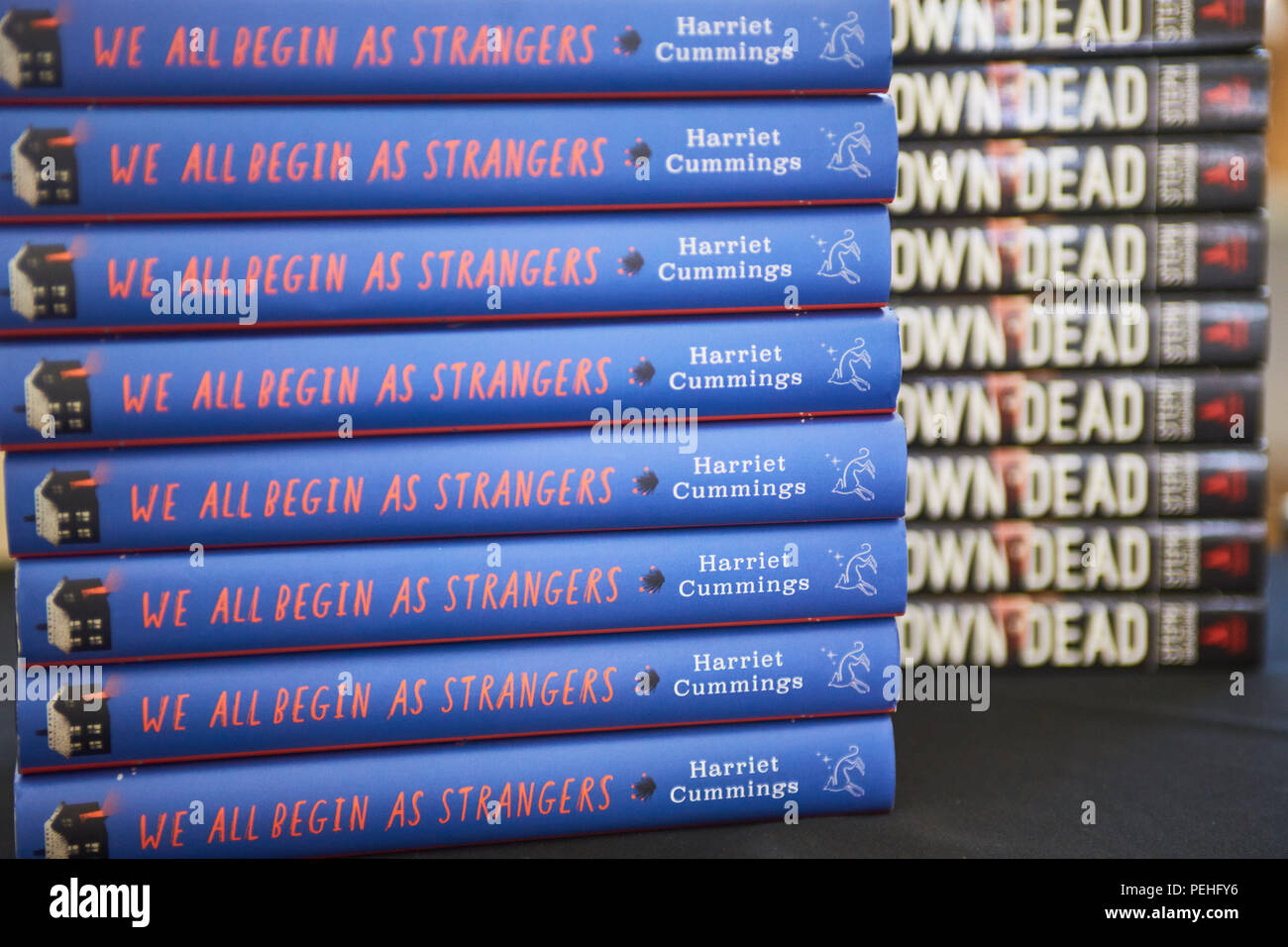 """A stack of books showing spines with the title """"We All Begin As Strangers"""" by Harriet Cummings - Stock Image"""
