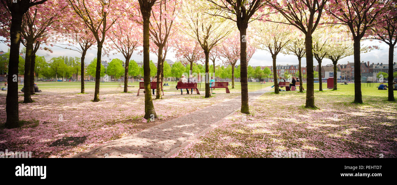 It Was Beautiful Afternoon For >> A Beautiful Afternoon In Amsterdam Walking In The Park Under The